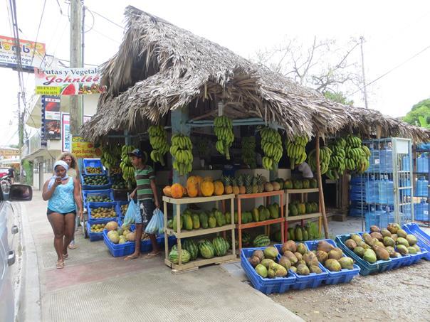 Puesto de guineos, papayas,mangos...