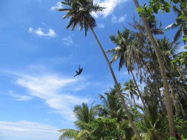 Coger cocos al estilo «Cirque du Soleil»