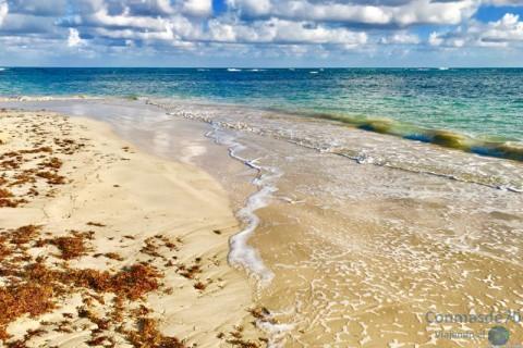 Un lugar idóneo para escribir. Las Terrenas-República Dominicana.