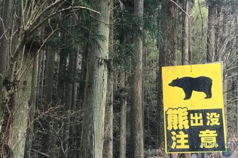 Nakasendo trail/Japón-Sudeste asiático 2