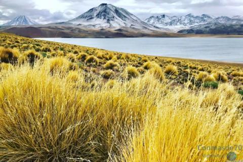 CHILE / Atacama – América del Sur