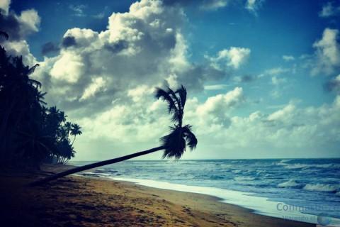 REPÚBLICA DOMINICANA. Mostrando parte de lo conocido